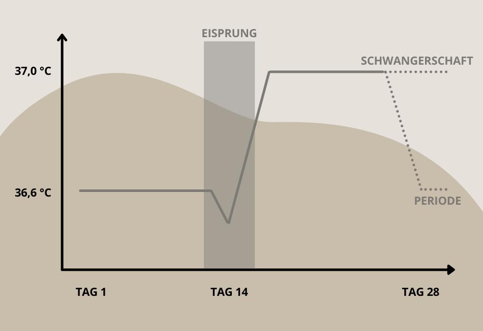 Grafik Basaltemperatur Verlauf